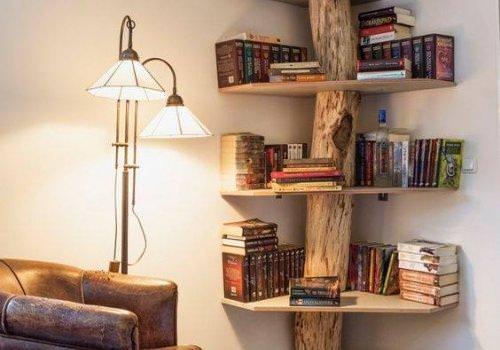 Libreria con vero tronco di castagno…