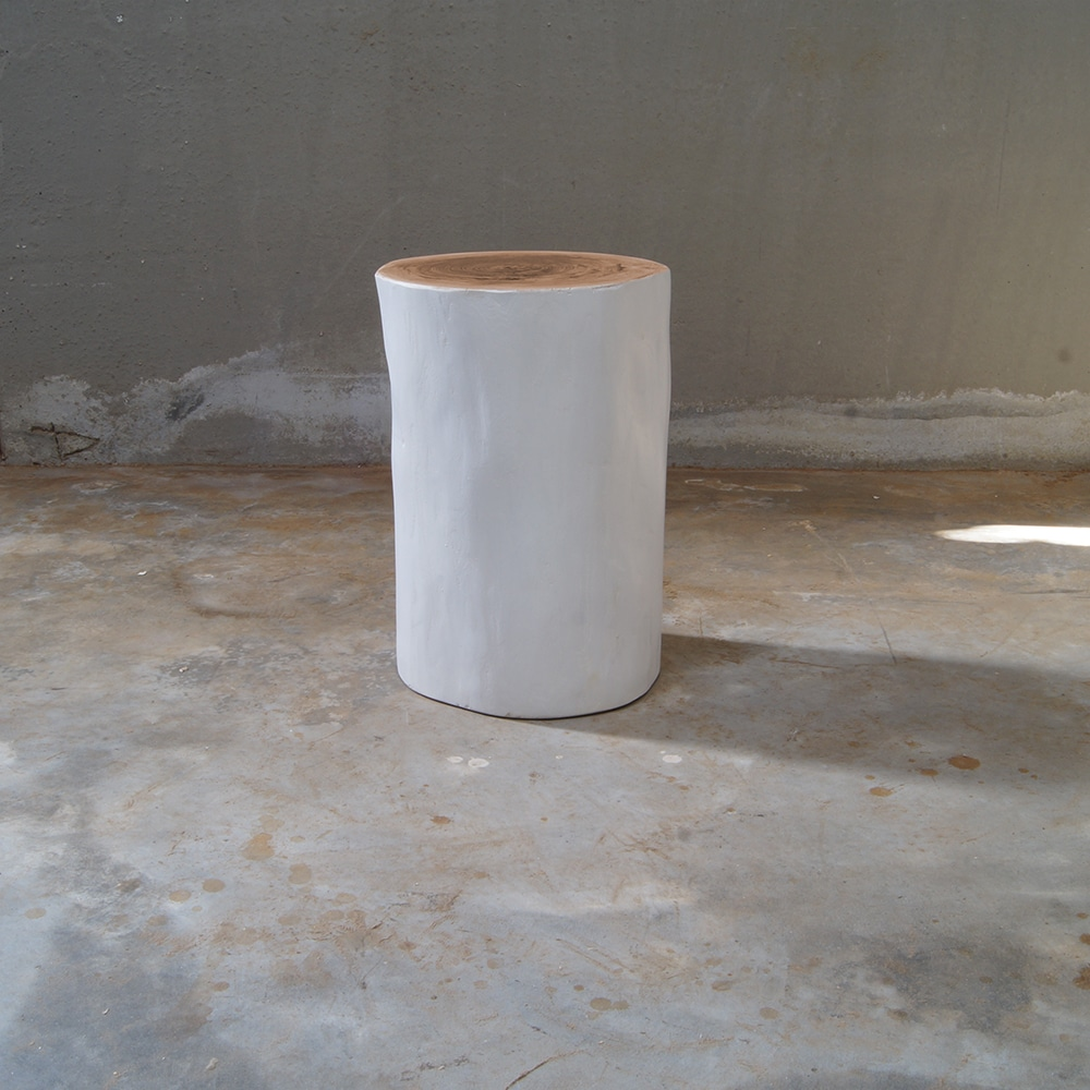 Tronco di legno bianco per arredamento