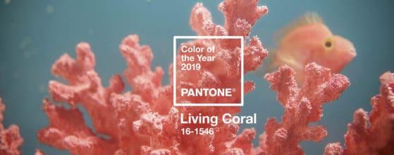 Colore dell'anno 2019 è Living Coral Pantone